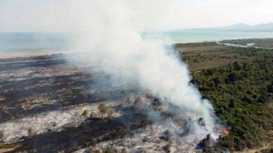 Kızılırmak Deltasındaki Yangında Kundaklama Şüphesi