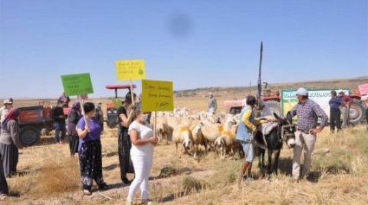 Maden Ocağına Karşı Koyunlu Eylem