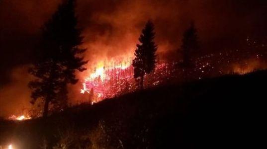 Trabzon'da 22 Farklı Noktada Çıkan Yangın Söndürüldü
